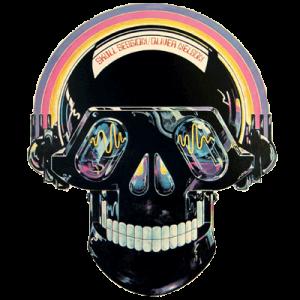 Disko skull